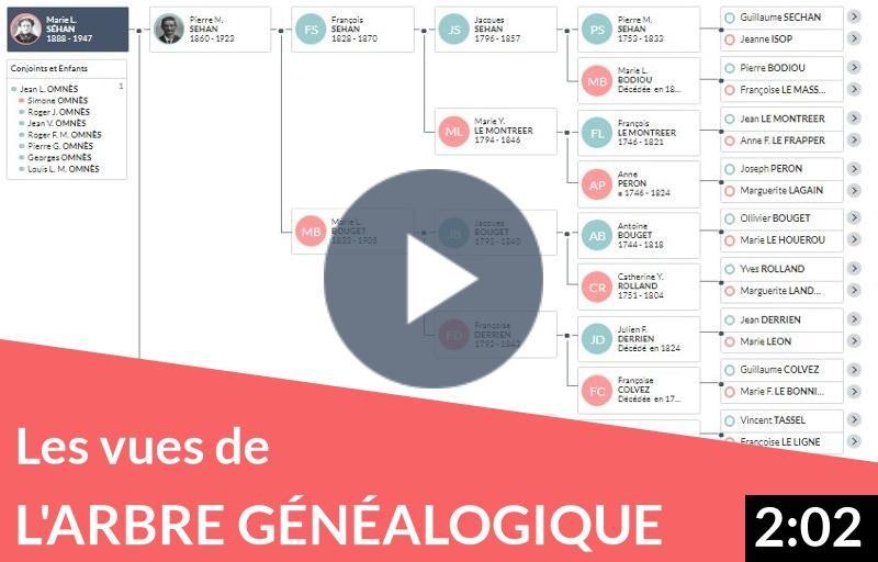 Les différentes vues de votre arbre généalogique
